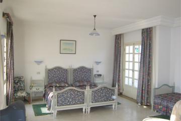 Отель Residence Mahmoud Тунис, Хаммамет, фото 1