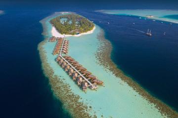 Отель Vilamendhoo Island Resort & Spa Мальдивы, Ари Атолл, фото 1